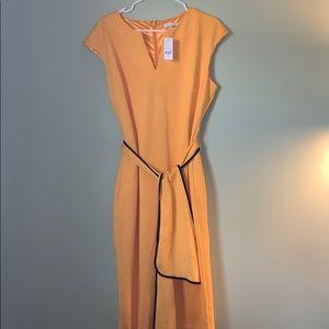 BRAND NEW NY&Co Yellow Dress w/Black & Yellow Belt